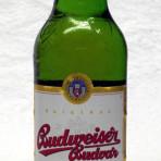 Piwo Budweiser ležák
