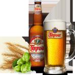 Piwo Topvar Světlé výčepní 10°