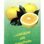 Citro Kapky – wyciąg z pestek grejpfruta