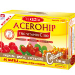 ACEROHIP TRIO VITAMIN C 500 mg