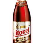 Piwo Litovel Gustav 13°