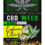 Kwiaty CBD Weed Platinium Euphoria Citric